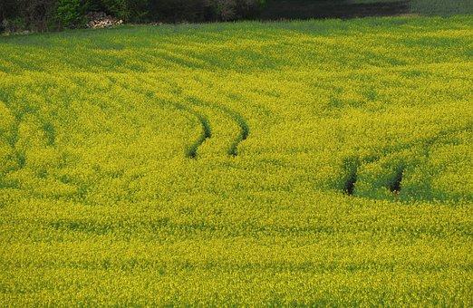 landbouwgrondstoffen